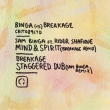 Binga vs Breakage (Remixes)