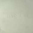 Invisible (Vol. 4)