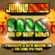 Put Up Your Hands (Freestylers & Run Tingz Cru Remixes)