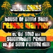 Reggae Warrior (Ed Solo & Stickybuds Remix / Original Mix)