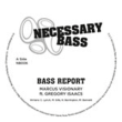 Bass Report (Vocal / Dub)